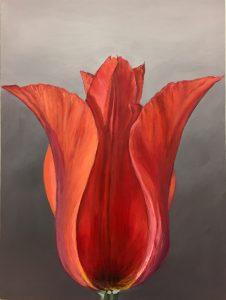 flower art, tulip, realism, fine art